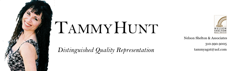 Tammy Hunt Real Estate Image