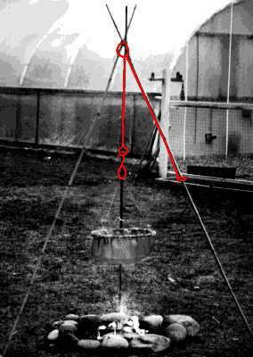 tripod image